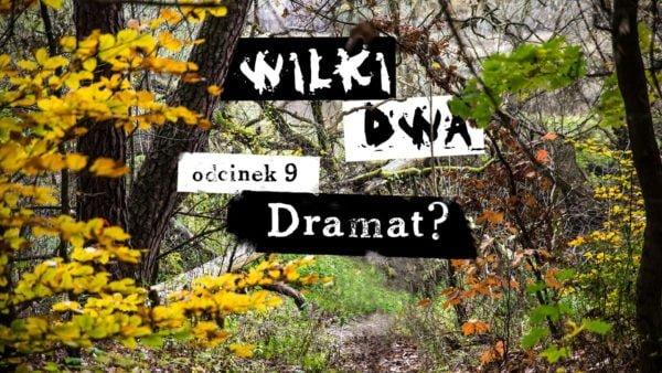 Wilki dwa. Odcinek 9: Dramat?