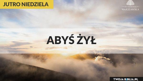abys_zyl_1200X750(1)