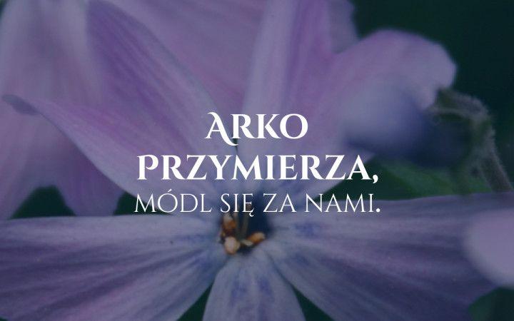 arkoprzymierza