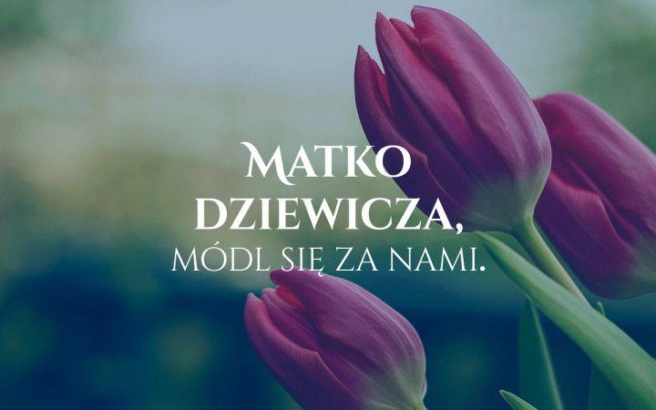 matkodziewicza