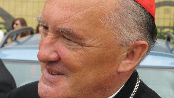 Kardynał Nycz w sprawie prof. Chazana: To groźny precedens