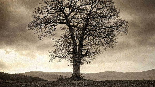 Lucy Phere – na dobre i złe