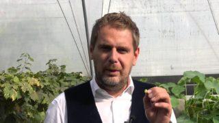 Wojciech Modest Amaro: Znaleźć Boga wkuchni