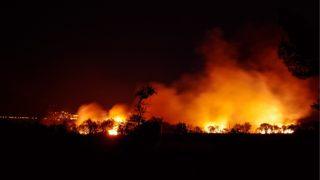 Papież modli się zaofiary pożarów wKalifornii
