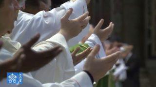 Papież: jedyną sensowną odpowiedzią jest solidarność