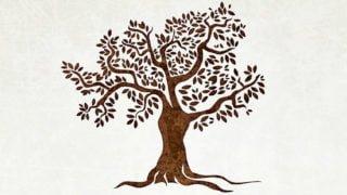 Drzewo Życia. Czym dla nas jest?