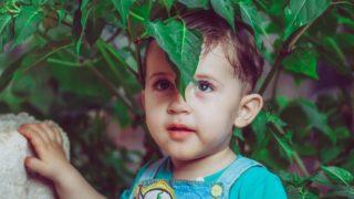 """Syria: Rusza program pomocy dla """"dzieci-duchów"""""""