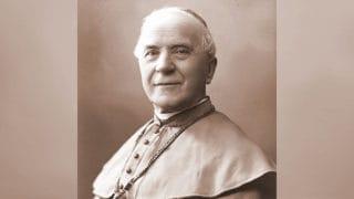 Św. Józef Sebastian Pelczar: specjalista odsumienności