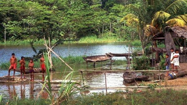 Watykan opublikował dokument roboczy dot. Amazonii